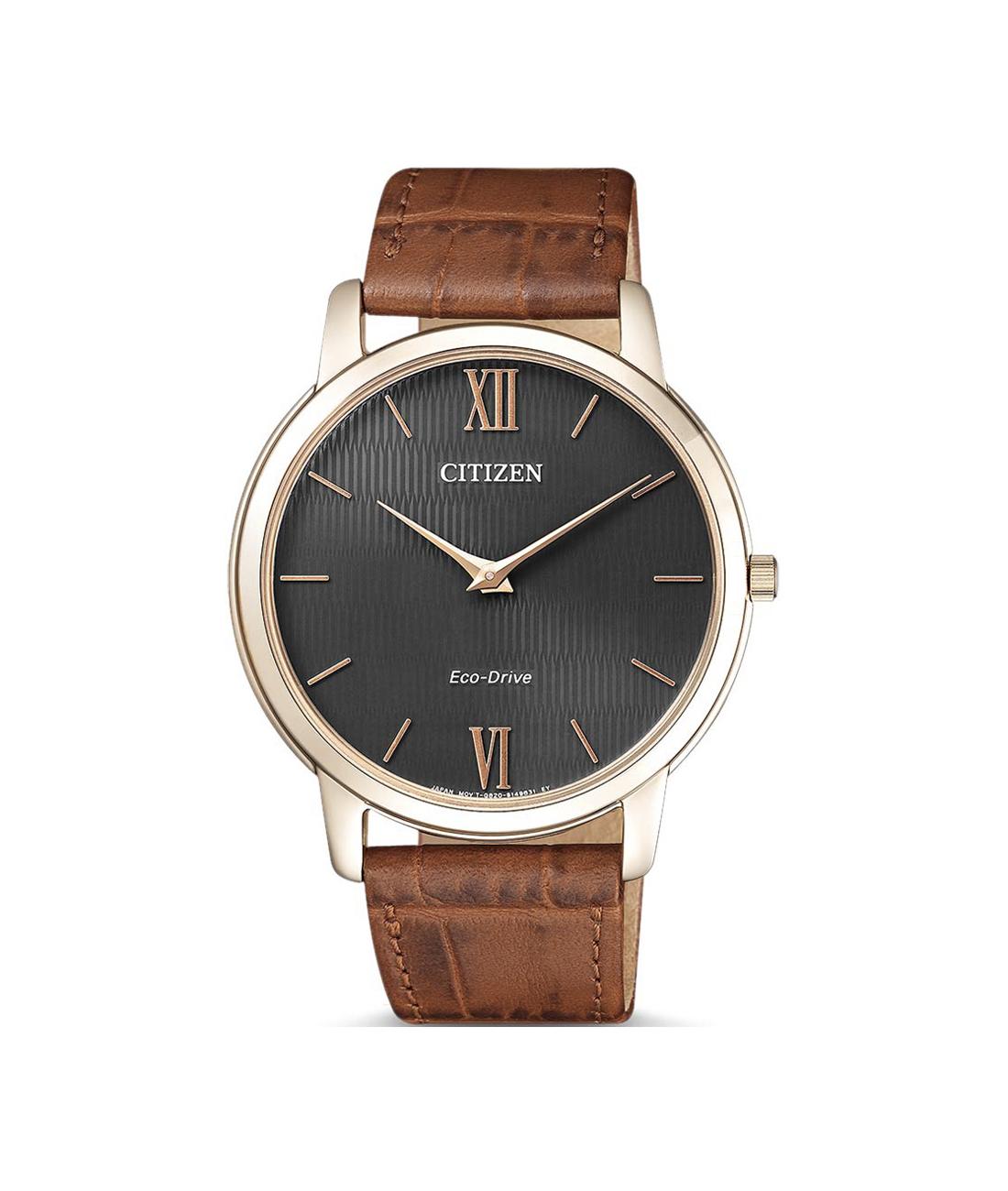Zegarek Citizen Eco-Drive AR1133-15H w atrakcyjnej cenie ... 2adb18643e