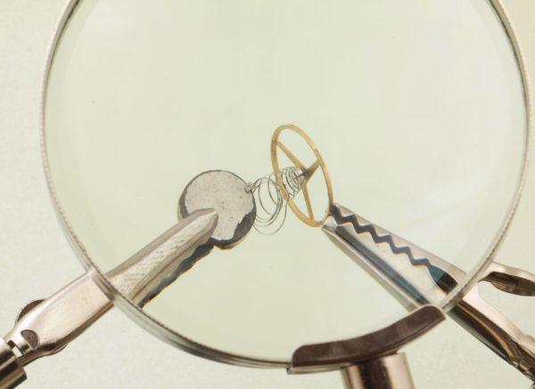 magnes i sprężyna włosowa